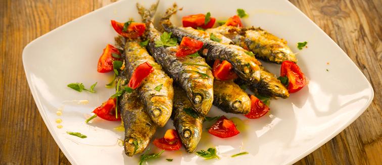 Sardines & Herring