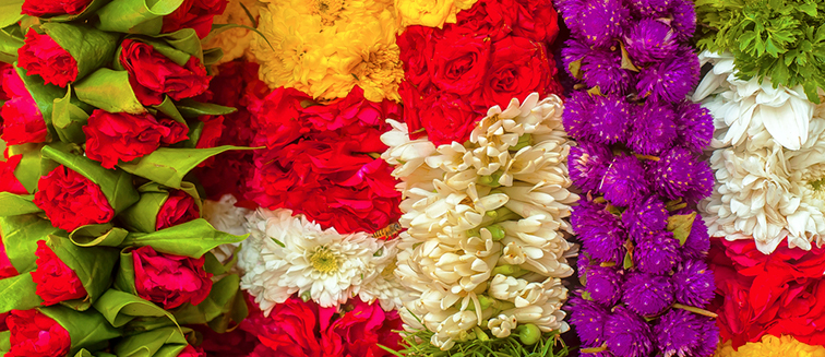 Carnaval de flores de Chiang Mai