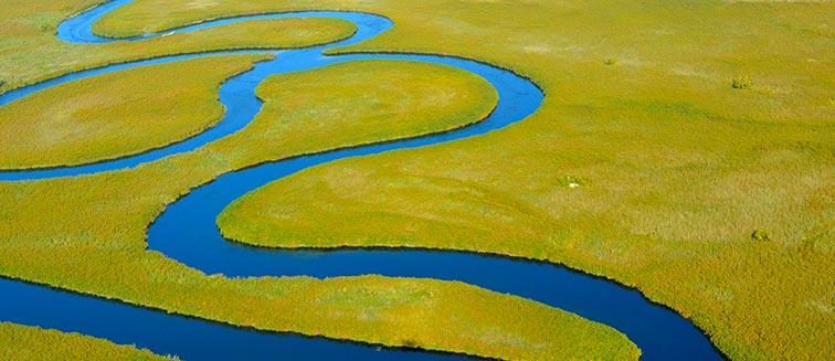 Cuándo viajar al Delta del Okavango