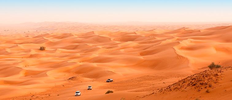 <em>Dubai</em> Reserva Natural