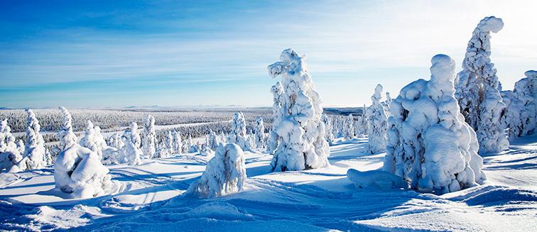 Laponia - Salla