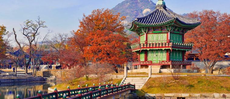 viajes a Seúl